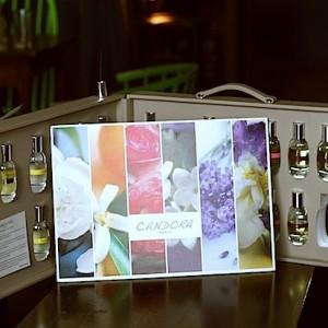 Candora: un parfum unique créé par vous (concours terminé)