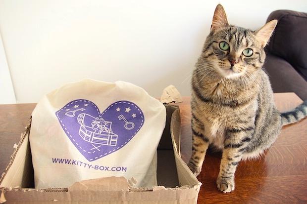 Kittybox Pâques-2