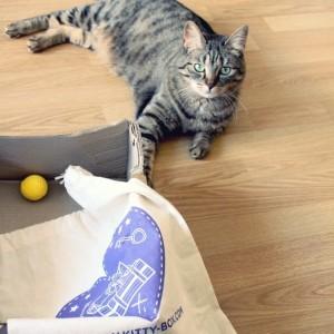 Shareh découvre la Kittybox de Pâques