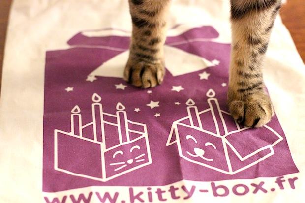 Kittybox mai 2013-15