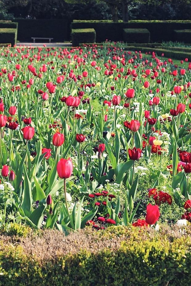 Spring in Paris 1