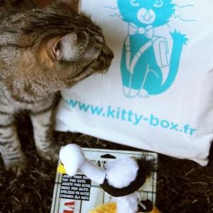 Kittybox rentrée (août)
