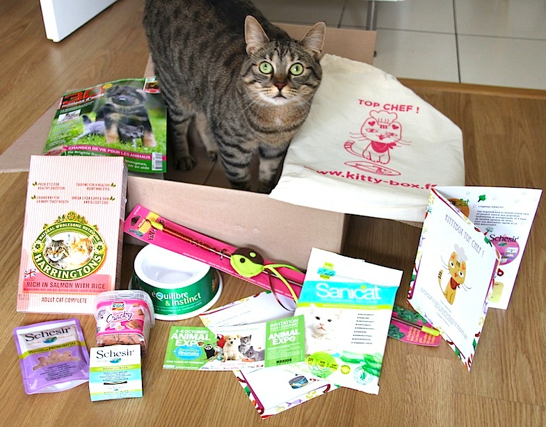 Kittybox septembre-1