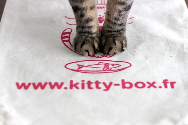 Kittybox septembre-11