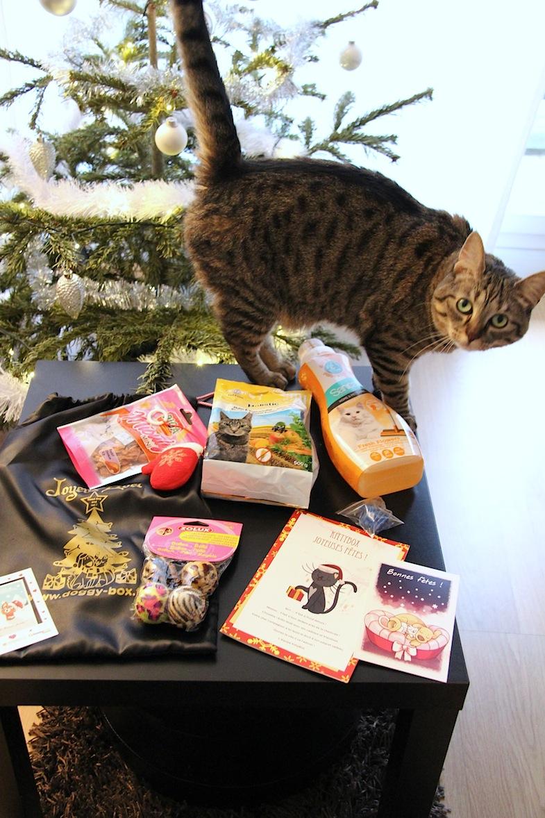 Kittybox decembre 2013-2