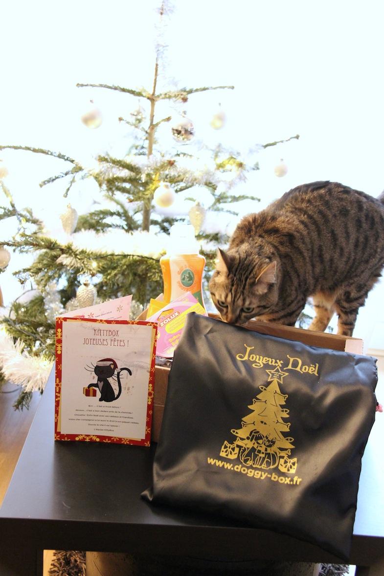 Kittybox decembre 2013-3