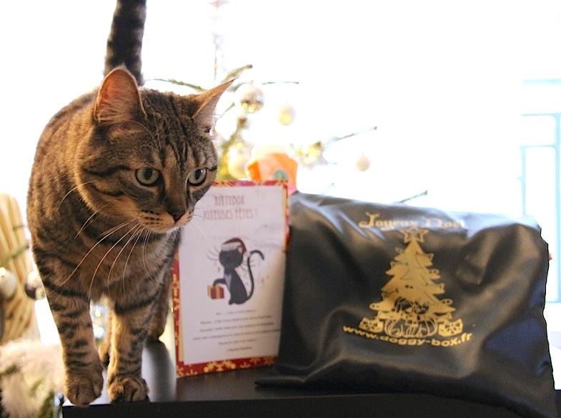 Kittybox decembre 2013-4