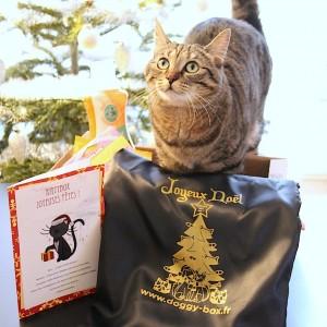 Kittybox Joyeuses Fêtes (décembre)