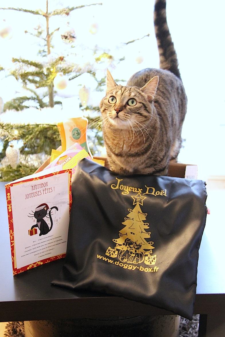 Kittybox decembre 2013-5
