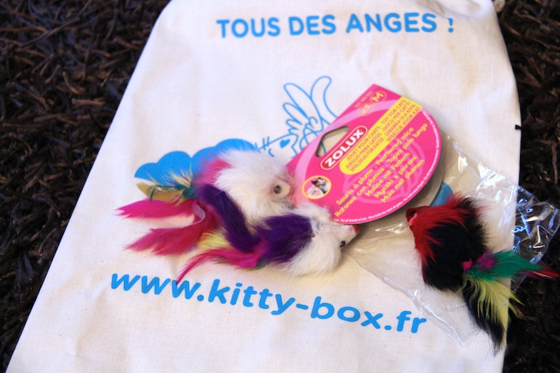 Kittybox novembre Tous des Anges-4