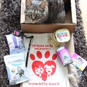 Kittybox Saint-Valentin (février)