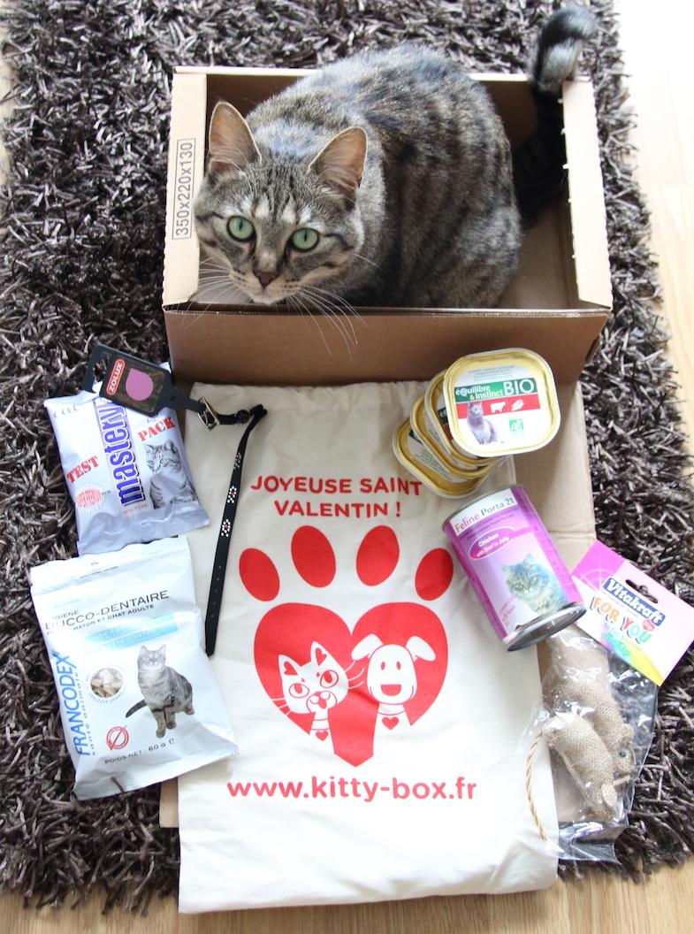 Kittybox Fevrier Saint-Valentin-1