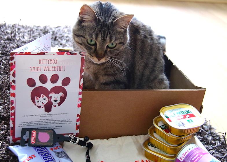 Kittybox Fevrier Saint-Valentin-3