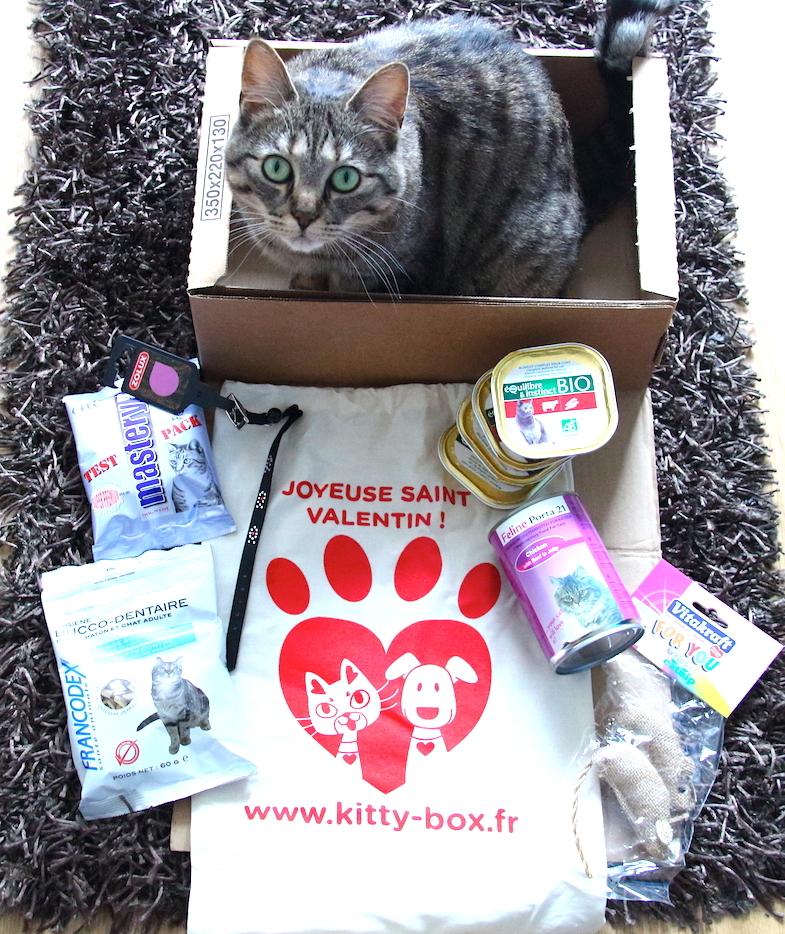 Kittybox Fevrier Saint-Valentin-4