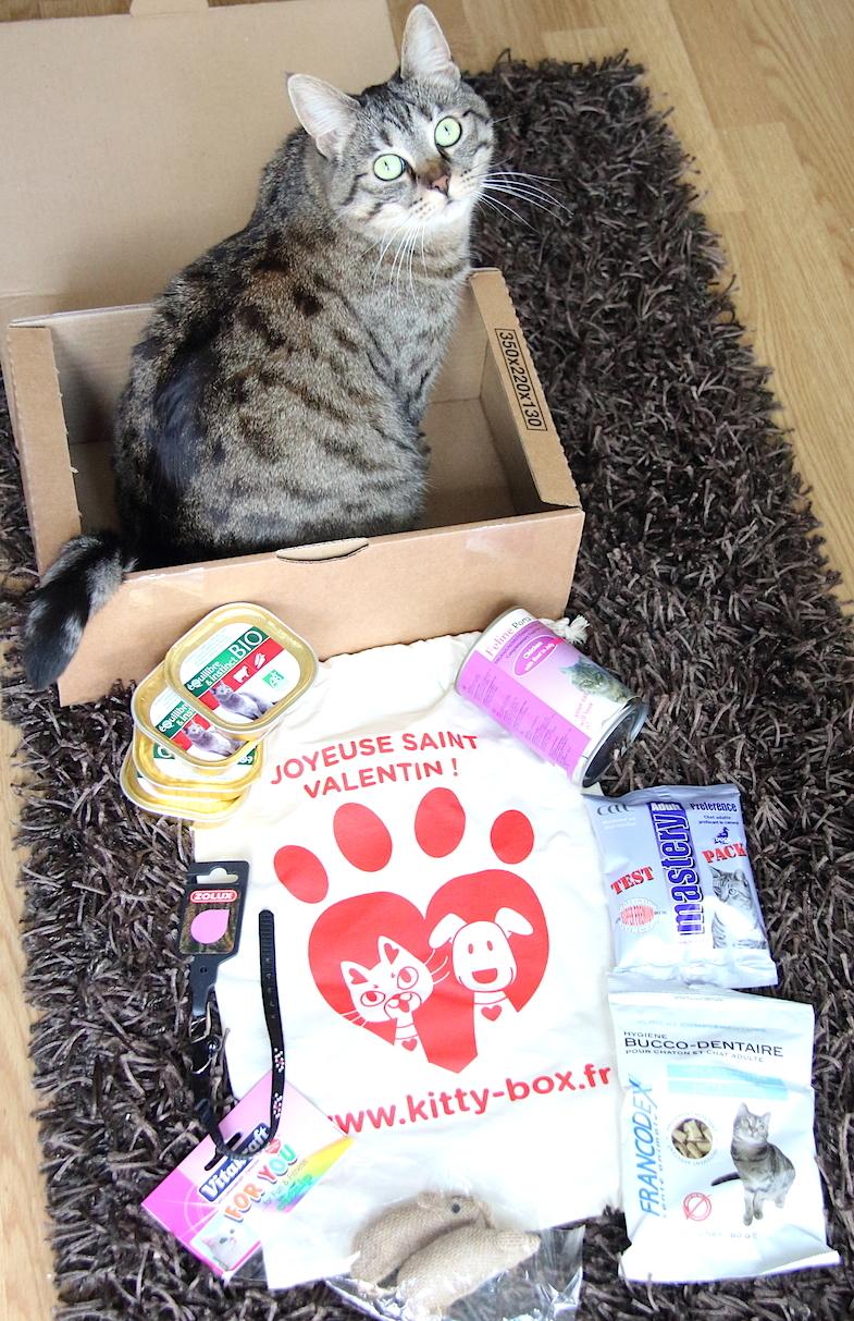 Kittybox Fevrier Saint-Valentin-6