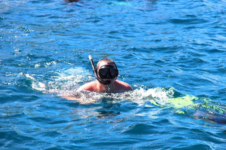 Nage avec les dauphins Ile Maurice-11