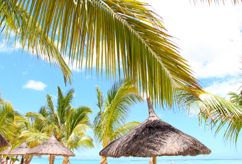 Parasols Ile Maurice