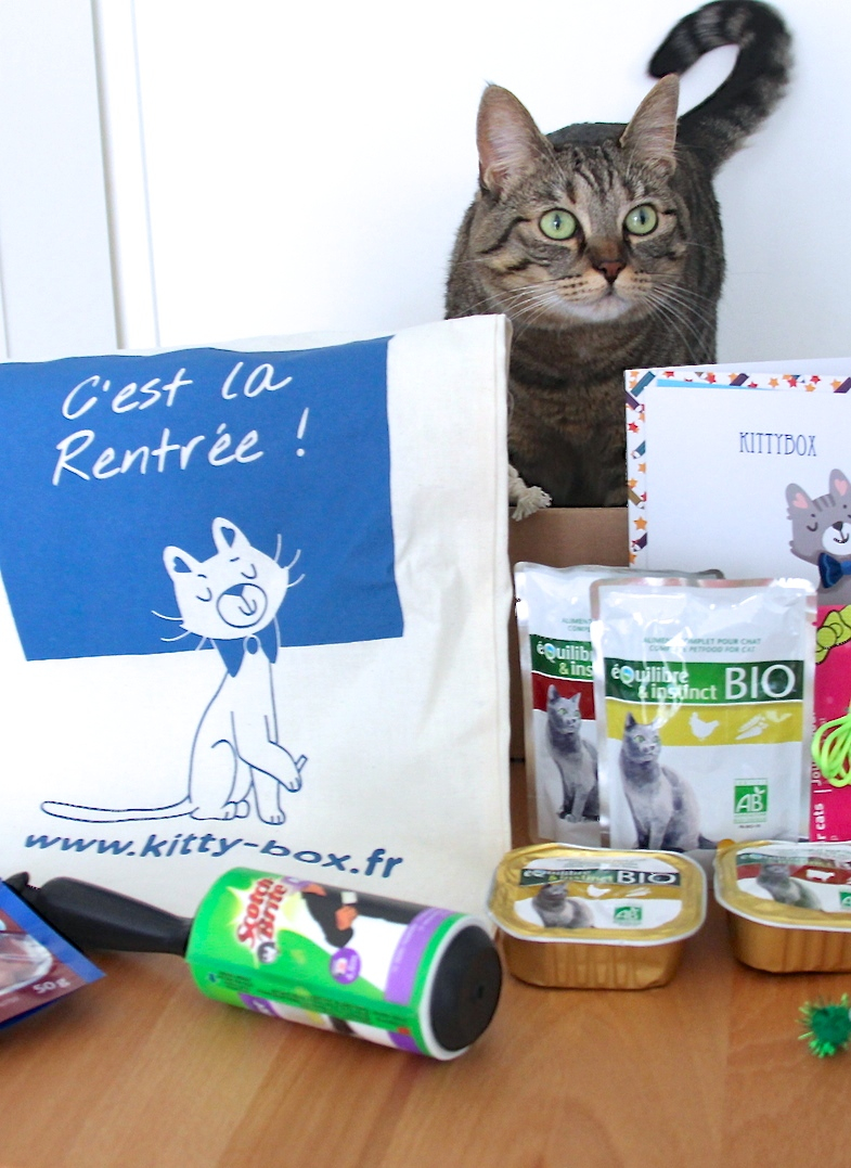 Kittybox septembre rentree 2014