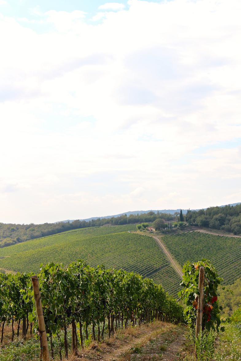 Au coeur de la Toscane-Le Chianti-21