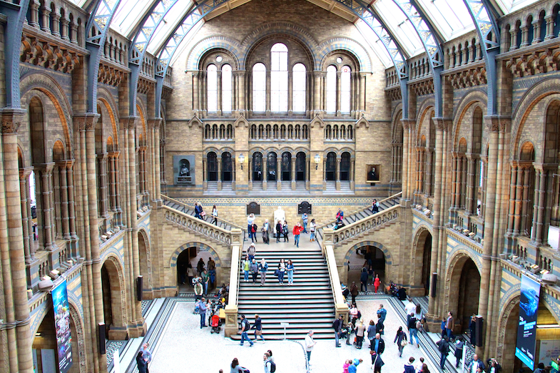 Natural History Museum London Londres city guide-22