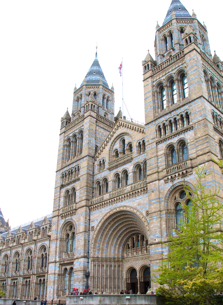 Natural History Museum London Londres city guide-23