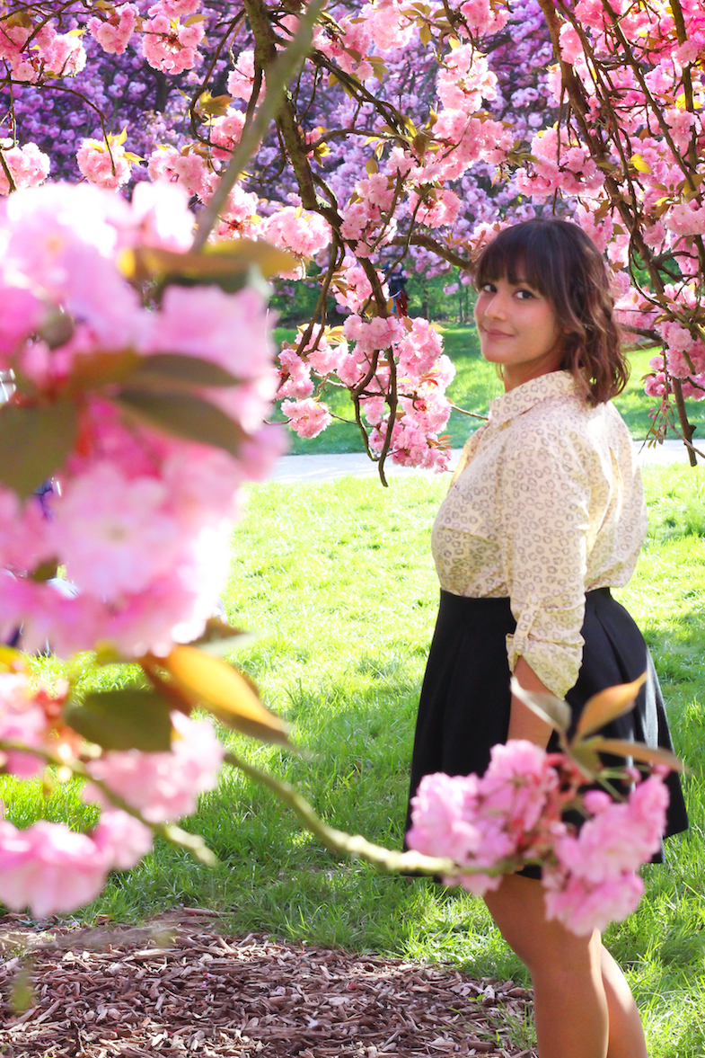 Sakura heaven-3