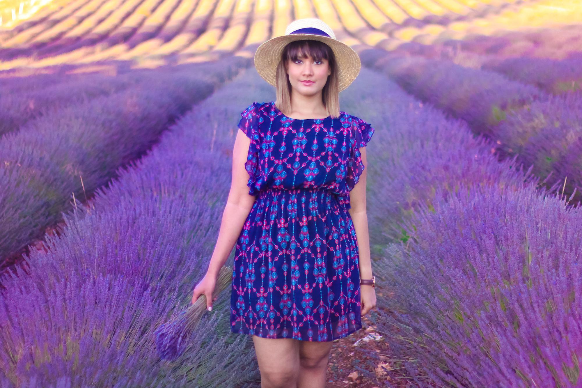 Lavender -1
