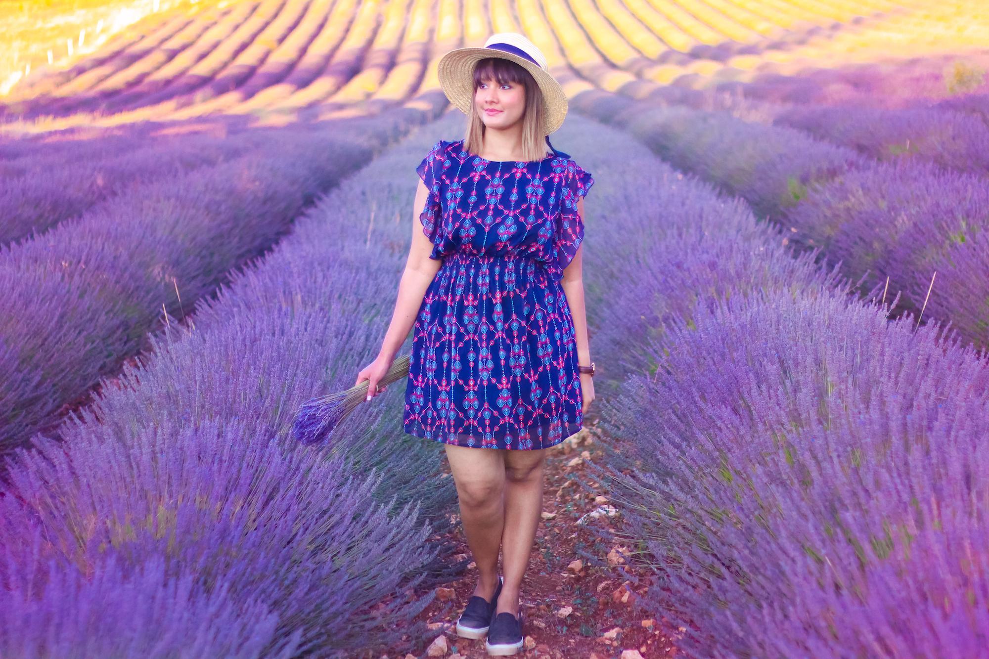 Lavender -3