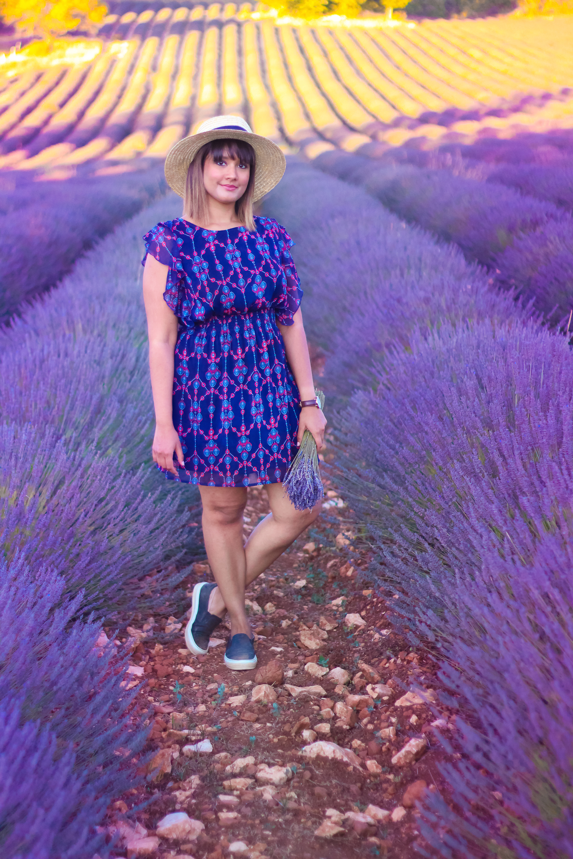 Lavender -4
