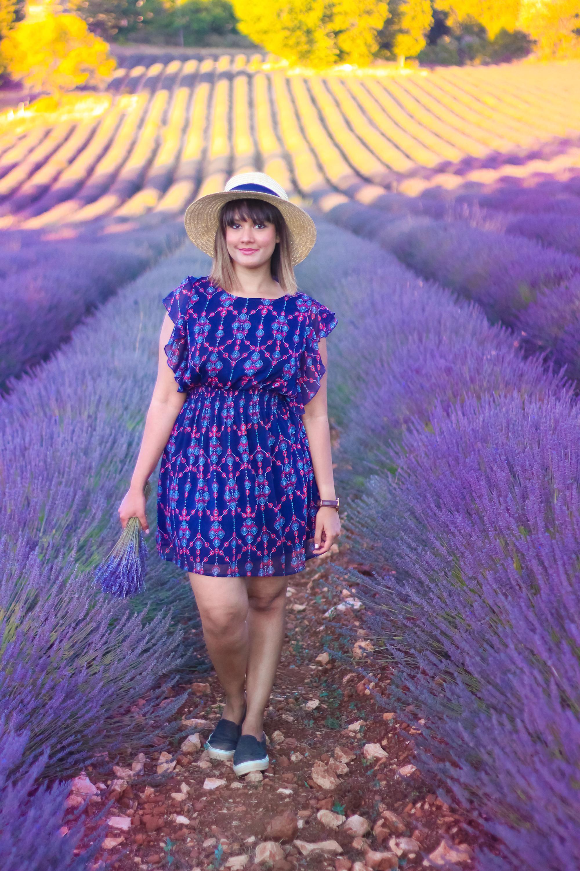 Lavender -6