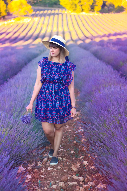 Lavender -7