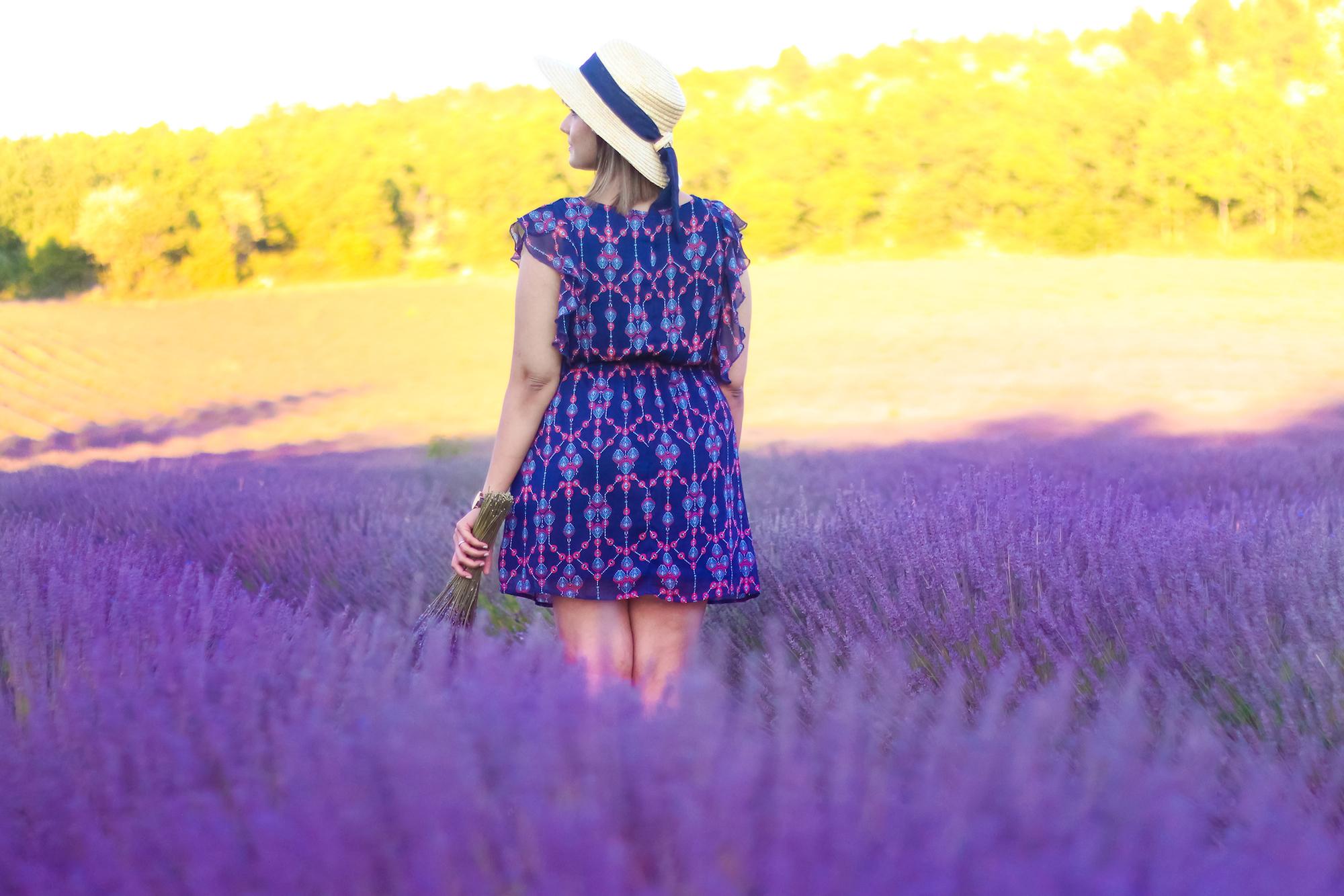 Lavender -9