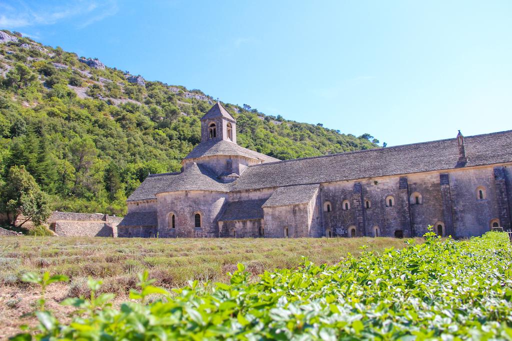 Villages du Lubéron-Abbaye de Sénanque 1