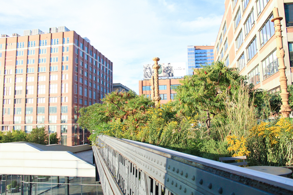 New York city guide Highline
