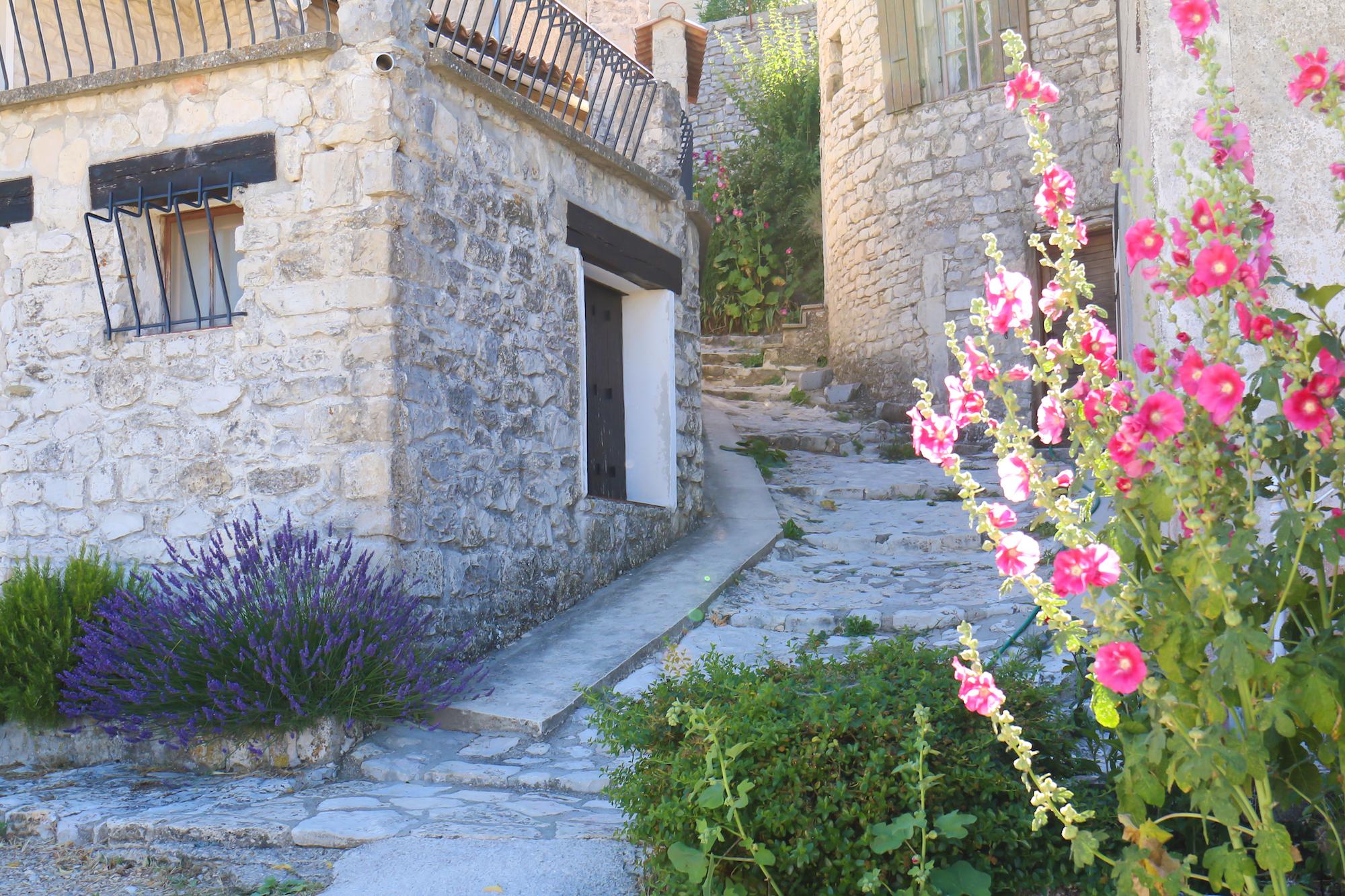 Champs lavande provence village Banon-12
