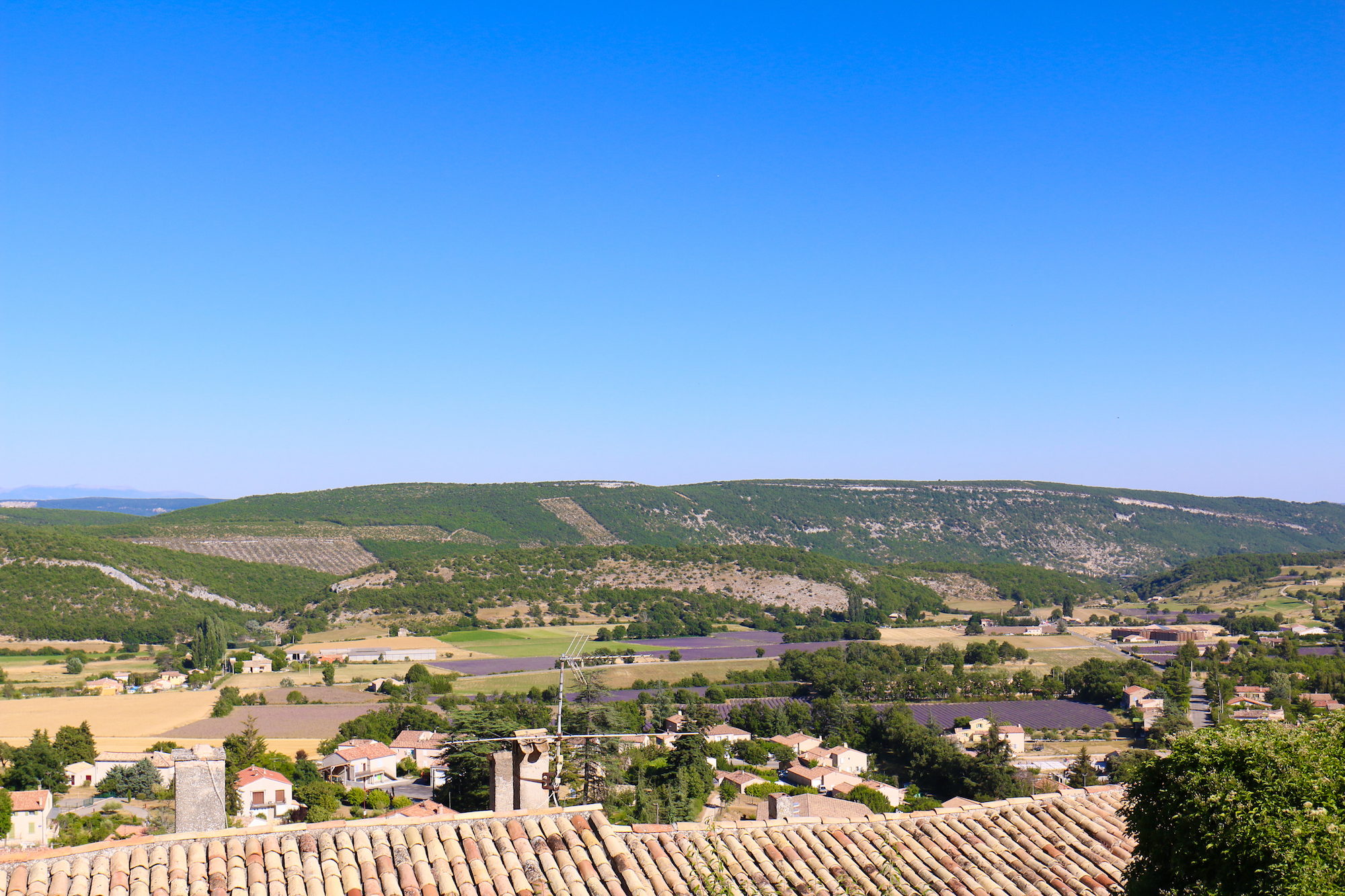 Champs lavande provence village Banon-13