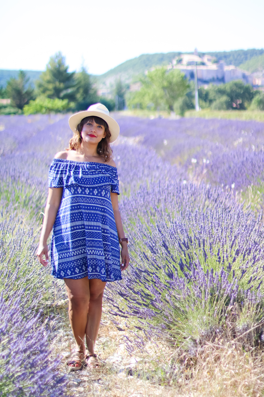 Champs lavande provence village Banon-3