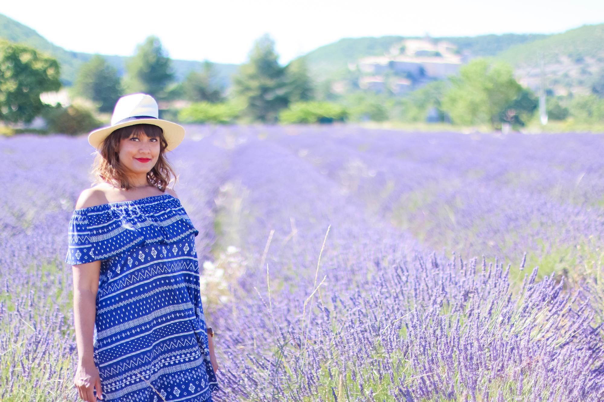Champs lavande provence village Banon-4
