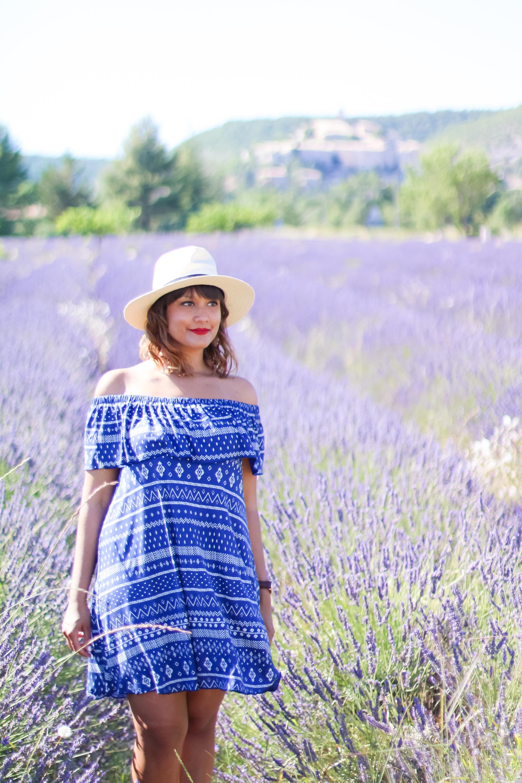 Champs lavande provence village Banon-8