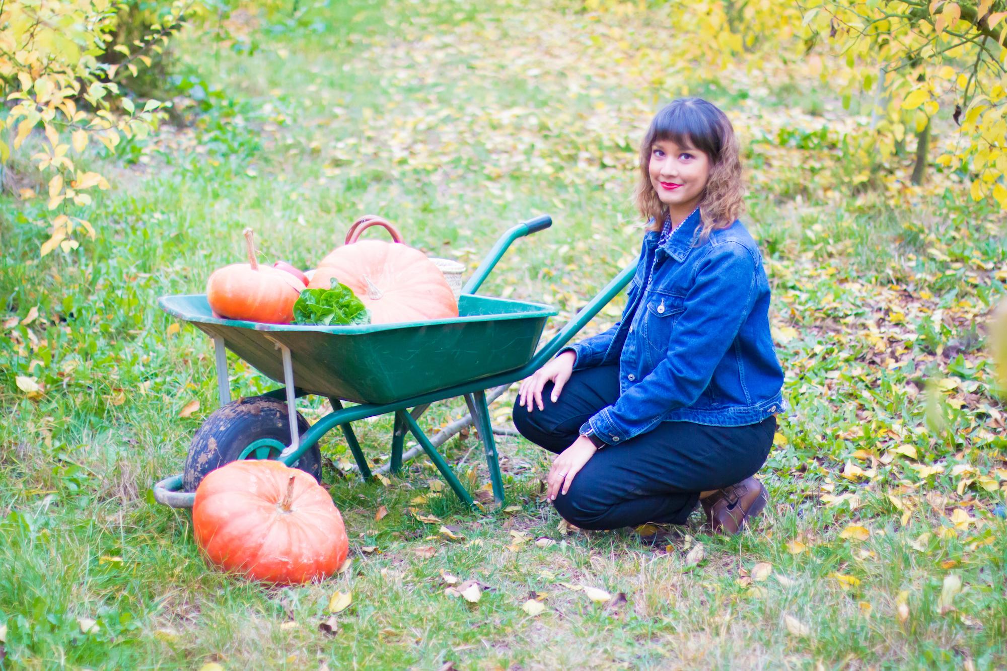 prumpkin-season-ferme-du-logis-7