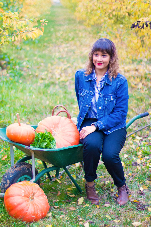 prumpkin-season-ferme-du-logis-8