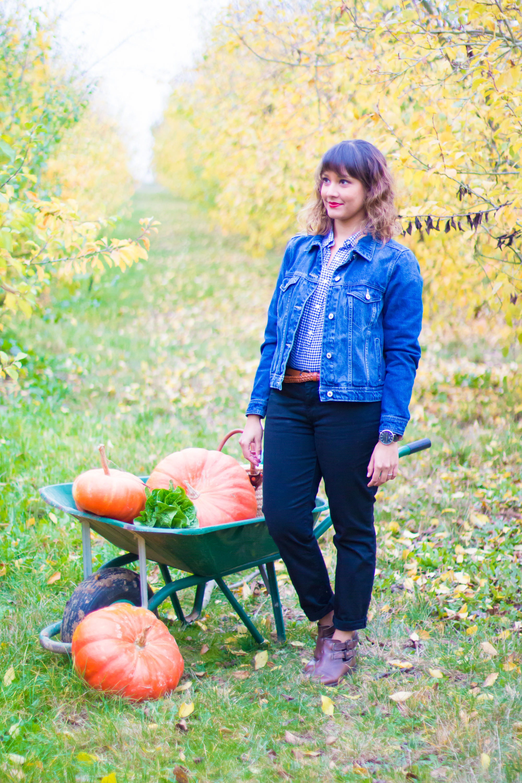 prumpkin-season-ferme-du-logis-9